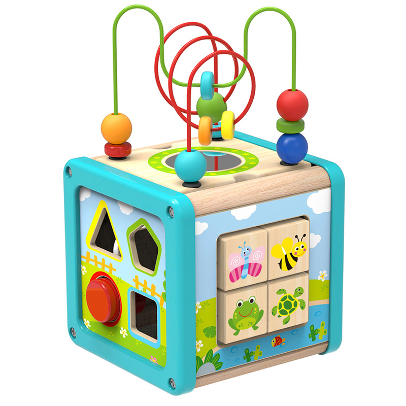 Activity Cube Five in One