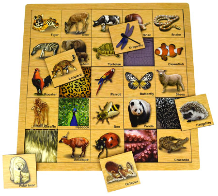 Match Animal with Skin Type Puzzle