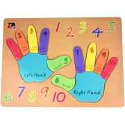 Counting Fingers Hands Puzzle